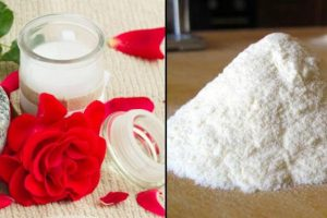 wheat flour face pack for oily skin