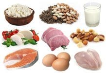 Protein Rich Foods for Healthy Weight Loss